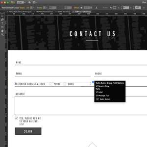 Muse Contact Form Updates